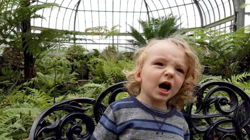 little boy screaming - How Wee Blessing is Preventing Changing Room Meltdowns