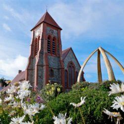 Visit Falkland Islands – An Unforgettable Adventure