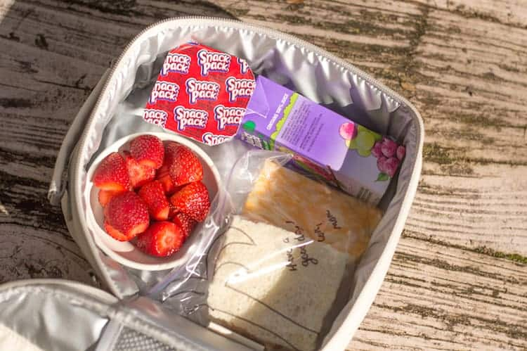 snack pack lunch
