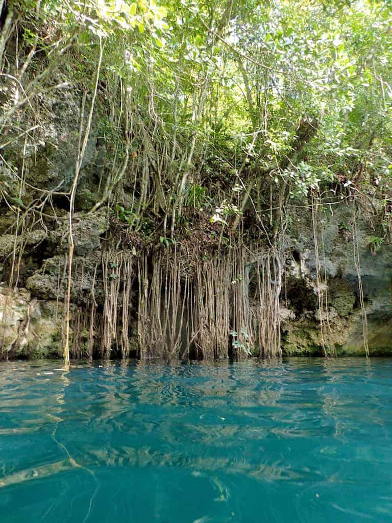 xenotes cenote