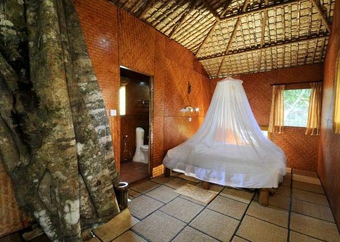 Vythiri Inside Tree House