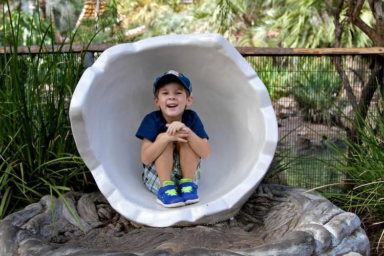 san diego zoo safari park 14
