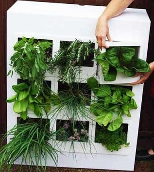 IndoorGarden1 - Let Your Green Thumb Flourish Even In The Smallest Spaces