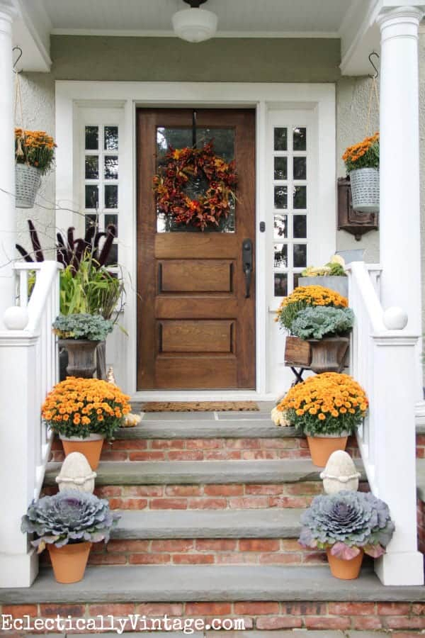 Mums - Fall Gardening: Add Color to Your Landscape with Mums, Pansies and Pumpkins!