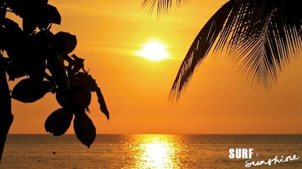copyright SurfandSunshine.com