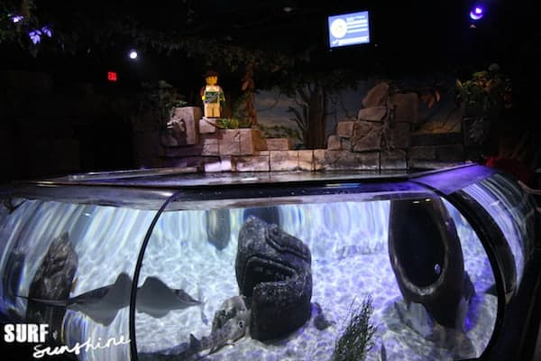 Sea Life Aquarium 12
