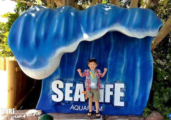 Sea Life Aquarium 3