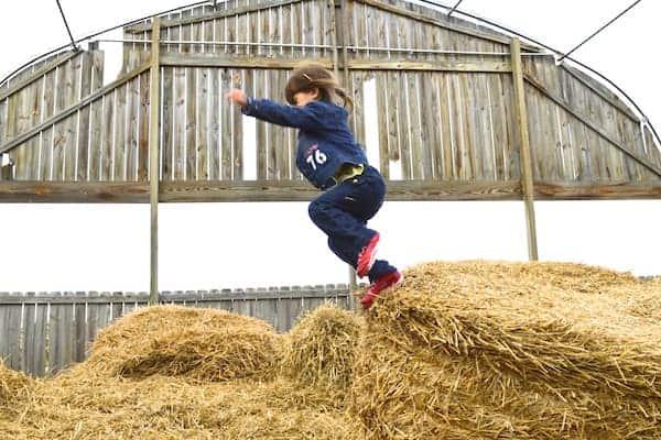 Hay Jumping