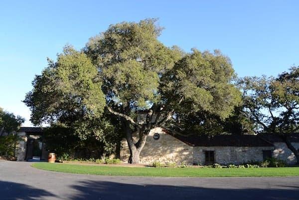 holman ranch carmel valley 1
