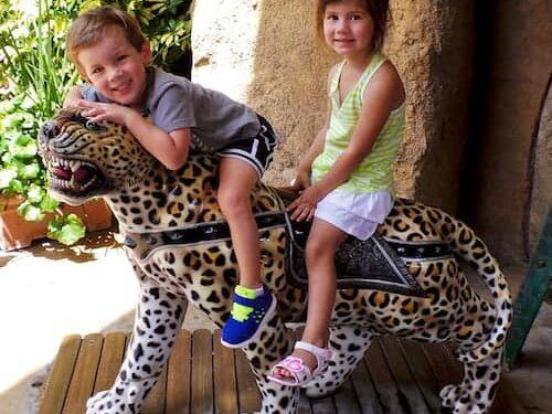 universal orlando cheetah