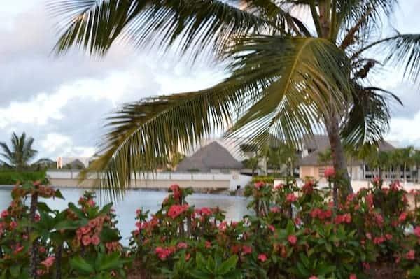 Paradise Dominican Republic