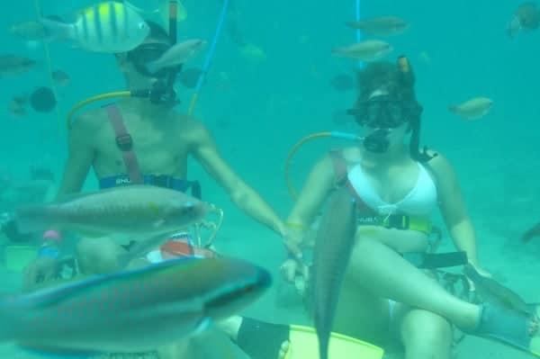 Snuba Diving 1
