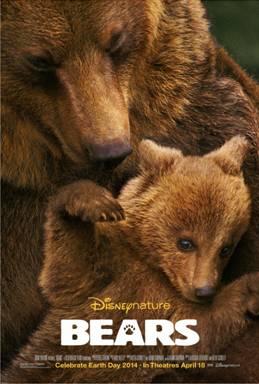 Disney Bears 2014
