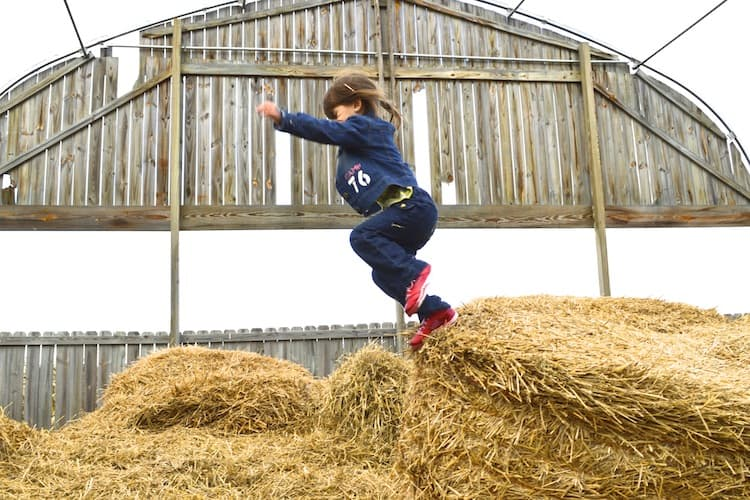 Girl Jumping in Hay