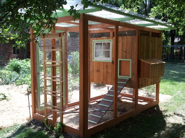 Free DIY Chicken Coop Plans
