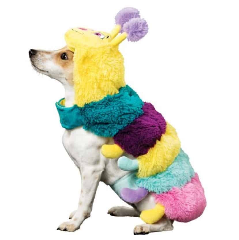 halloween costumes for pets