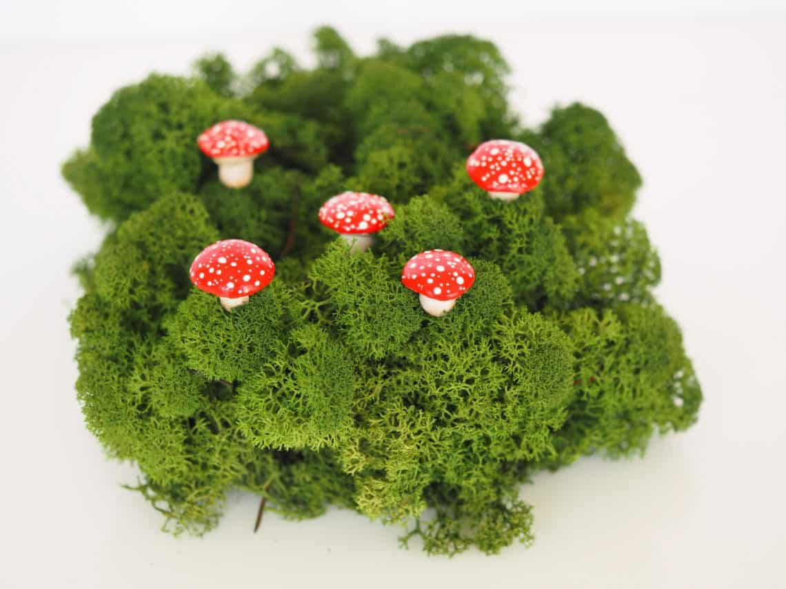 mushroom  1140x855 - DIY Fairy House Inspiration Plus Everything You Need To Make Your Own