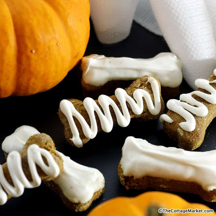 DIY halloween dog treats