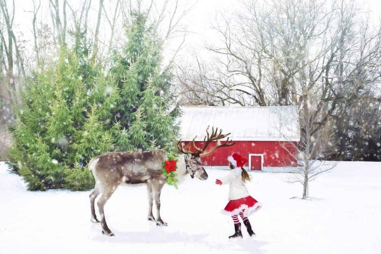 christmas-scene-1846486_1920