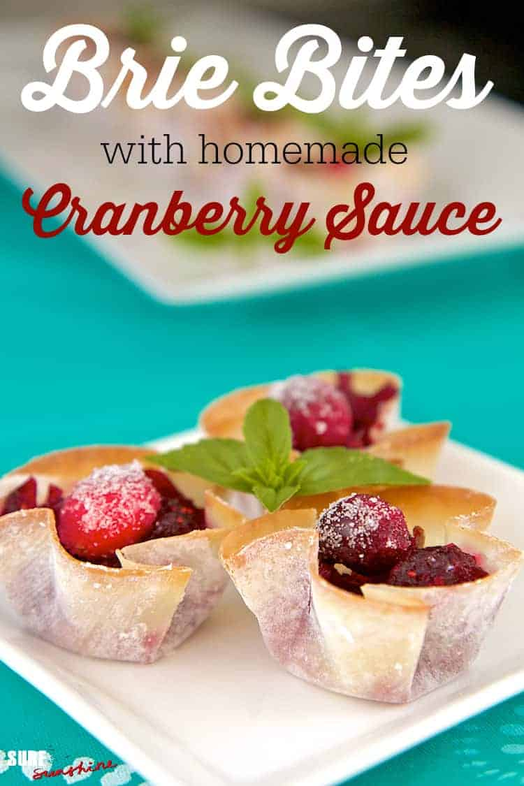 cranberry brie bites recipe final.jpg