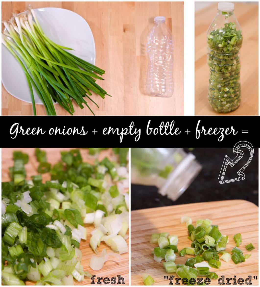 freeze dried green onions