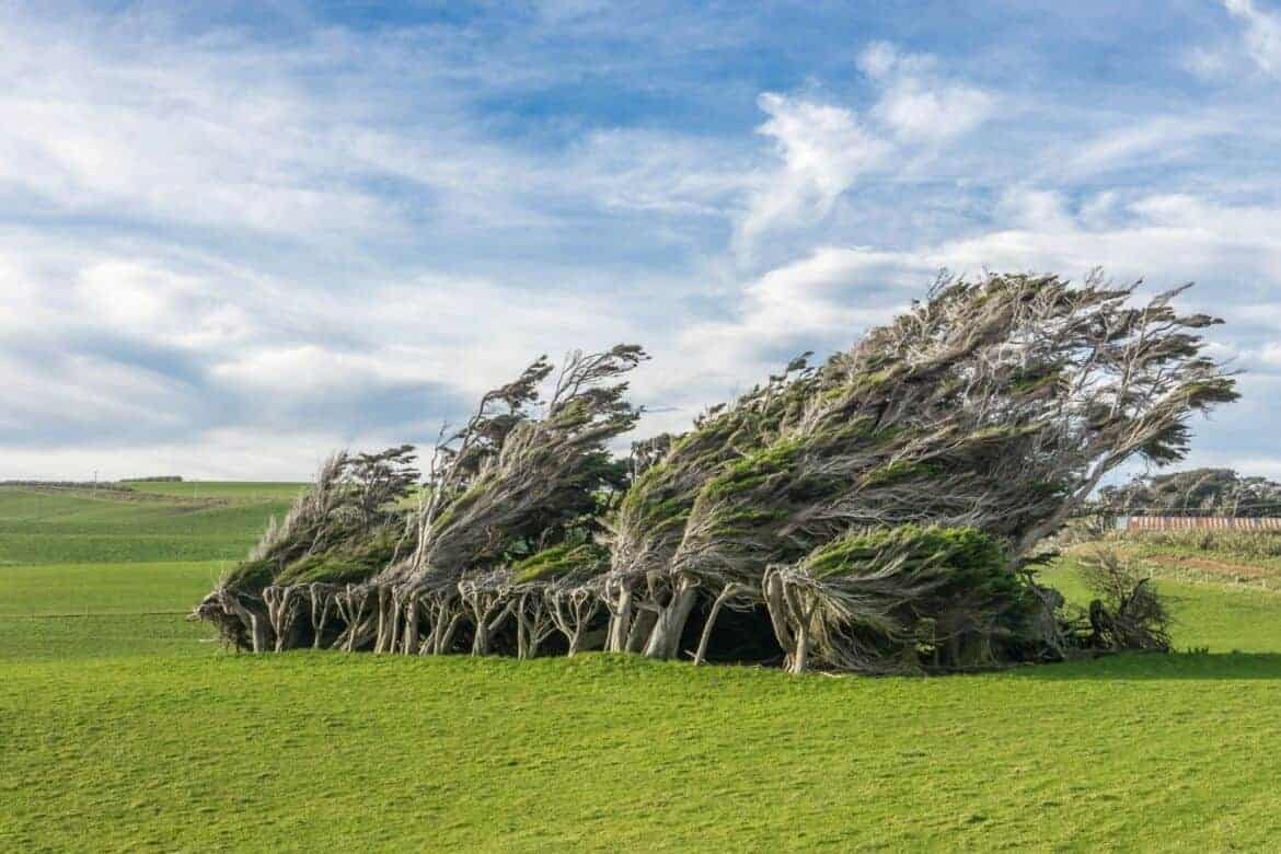 slope point new zealand - Must-See Bizarre Places Around the World