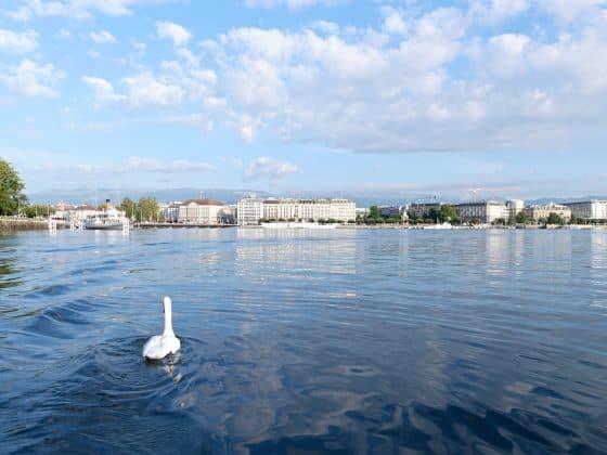 things to do in geneva switzerland 1 560x420 - How to Spend the Perfect 48 Hours in Geneva, Switzerland